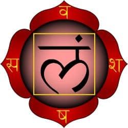Le chakra Muladhara