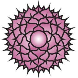 Sahasrara Chakra (Le Chakra de la Couronne)