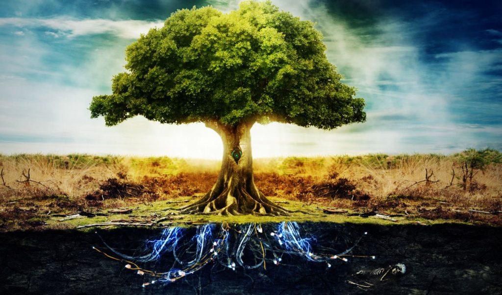 arbre de vie signification
