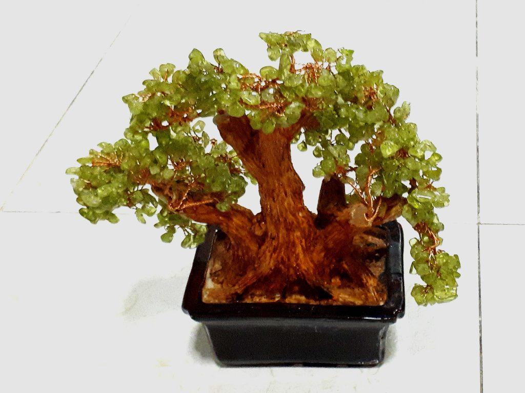 arbre naturel de feng shui