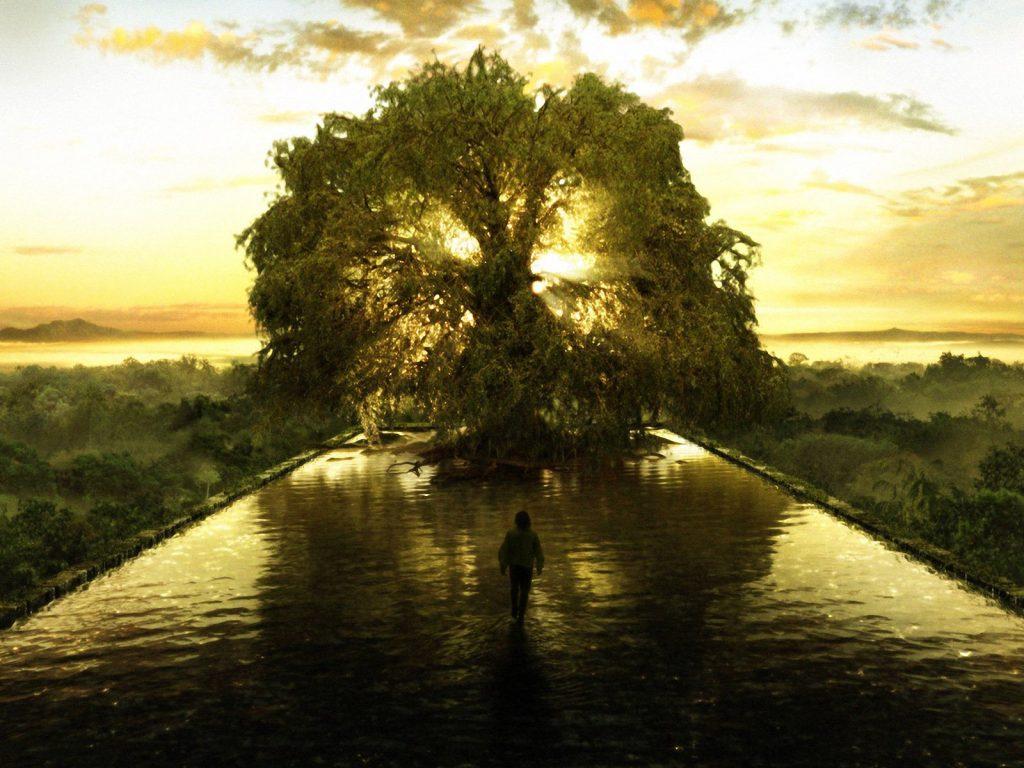 symbole arbre de vie